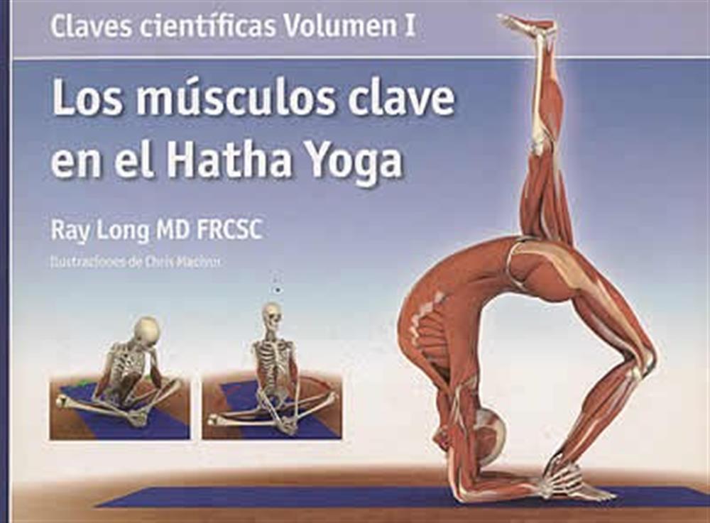 Los músculos clave en el Hatha Yoga -Claves científicas Volumen I