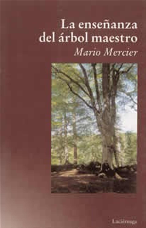 La enseñanza del árbol maestro